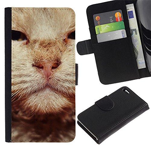 LASTONE PHONE CASE / Luxe Cuir Portefeuille Housse Fente pour Carte Coque Flip Étui de Protection pour Apple Iphone 4 / 4S / British Wirehair Cat Orange Whiskers