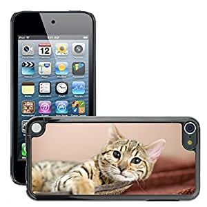 Hard Carcasa Skin Premium Shell Case Cover Funda//m00046528 Relaxing Animals Pets//Apple iPod Touch 5 5 G 5th