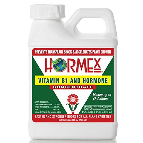 Hormex Vitamin B1 Rooting