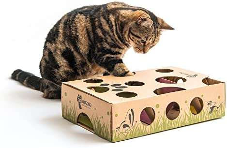 Top 10 Best Cat Toys For Bored Cats [Updated December 2020] 4