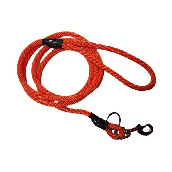 Weiss Walkie Dog Training Leash Safety Orange / Large Click on image for further info.
