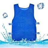 Summer Icy Cooling Vest Heat Resistant Apron for Men and Women for Fishing,Cycling,Running,Cooking