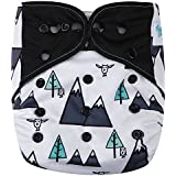 "HappyEndings Contoured AI2 All In Two Cloth Diaper / Snap-in Insert ""Mountain High"""
