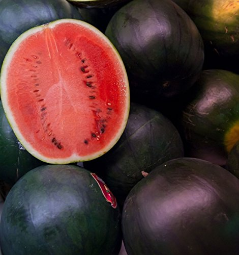 (50 Black Diamond Watermelon Seeds by RDR Seeds)