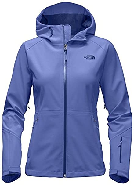 f9b70cb52 THE NORTH FACE Women's Apex Flex Gore-Tex Jacket: Amazon.ca: Sports ...