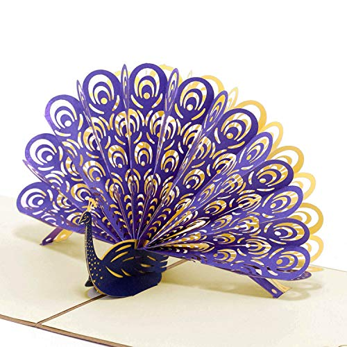 Paper Spiritz Peacock Pop up Cards Birthday, Anniversary Thank You Card for Husband Daughter Wife, Handmade Graduation Sympathy Blank Card, Laser Cut Gift Card with Envelopes all Occasions - Paper Factory Greeting Cards