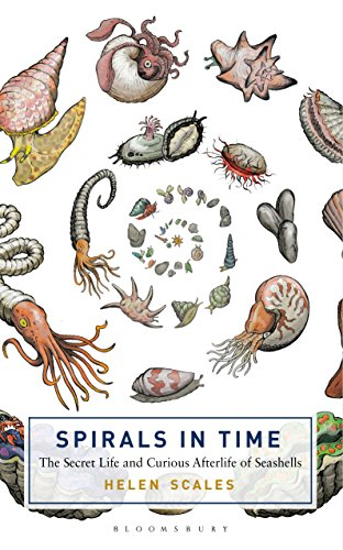 (Spirals in Time: The Secret Life and Curious Afterlife of Seashells)