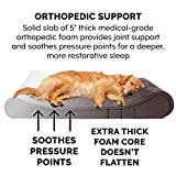 Furhaven Pet Dog Bed | Orthopedic Minky Plush