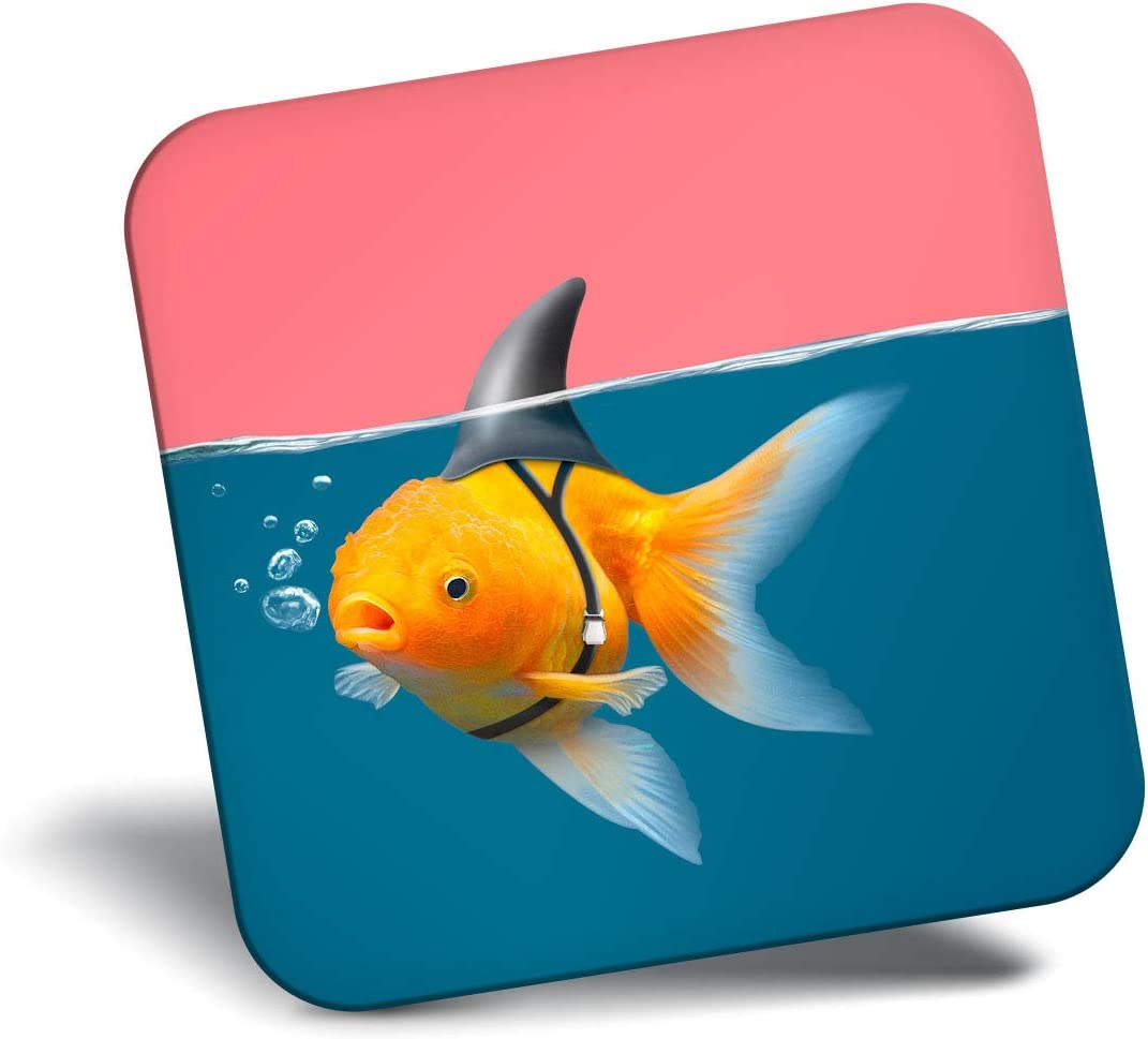 Destination Vinyl ltd Awesome Fridge Magnet - Funny Goldfish Shark Fish 3318