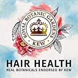 Herbal Essences, Sulfate Free Shampoo and