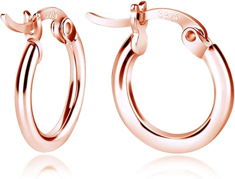pendientes hipoalerg/énicos regalo de joyer/ía de Navidad plata de ley 925 Pendientes de mariposa para mujer chapado en oro de 14 K