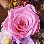 FORUSKY-Beauty-and-The-Beast-Preserved-Fresh-Flower-Glass-Immortal-Rose-Flower-Gift-for-Mothers-Day-Lover-Birthday-Valentines-GiftsWedding-Pink