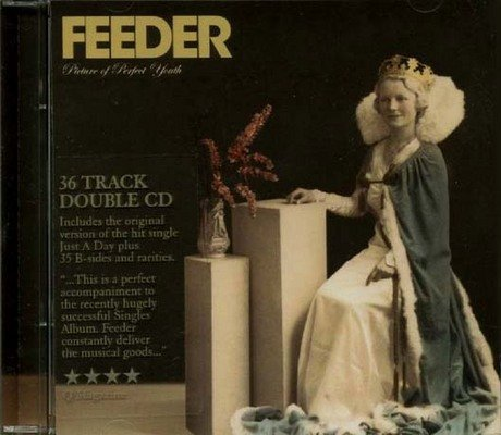 Feeder - Picture Of Perfect Youth / Sides & Rarities - Zortam Music