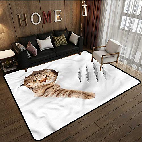 Living Room Area Rug Animal Funny Cat in Wallpaper Hole Ideal Gift for Children 5'6
