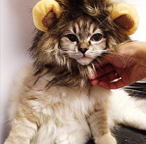 CoCocina Lion Mane Wig for Cat Costume Adjustable Halloween Christmas Easter Festival Party Activity-Mix