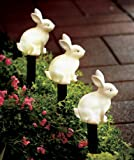 Set of 3 Solar LED Lighted Easter Bunny Outdoor Garden Stake Pathway Driveway Garden Yard Springtime Rabbit Decoration