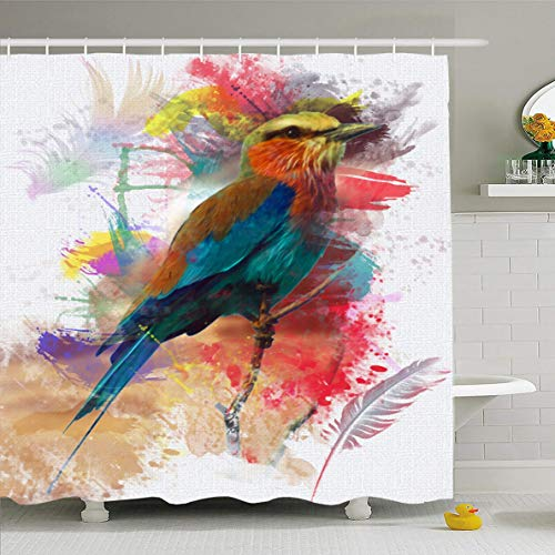 - Ahawoso Shower Curtain 60x72 Inches Art Feather Abstract Bird Colorfull Eye Paint Nature Lilac Breasted Roller Artistic Watch Waterproof Polyester Fabric Set with Hooks