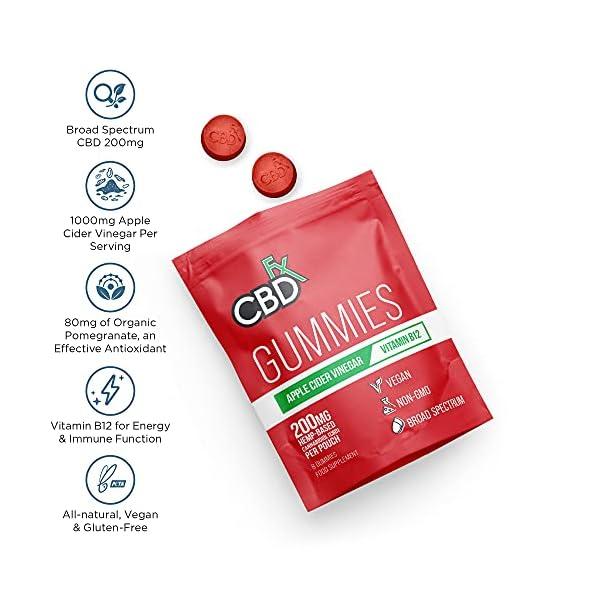 CBDfx Apple Cider Vinegar & B12 CBD Gummies (8 Gummy Pouch) – 200mg CBD