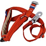 EONPOW Tree Climbing Spikes Gears Climber Safety Belt for Cutting Trees Cement Pole (Safe belt)