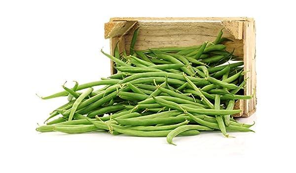 Judía francesa Saxa - verde, variedad enana - 500 g - semilla ...