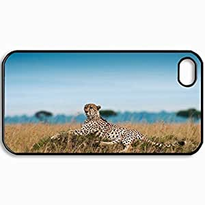 Personalized Protective Hardshell Back Hardcover For iPhone 4/4S, Cheetah Leisure Leopard Grass Big Cat Design In Black Case Color