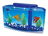 Penn-Plax Deluxe Triple Betta Bow Aquarium Tank, 0.7-Gallon