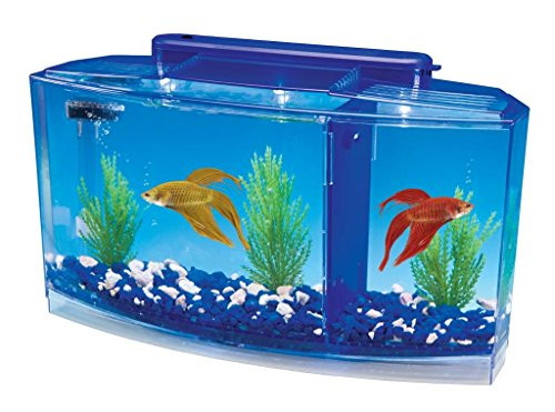 Penn Plax Deluxe Triple Betta Bow Aquarium Tank, 0.7-Gallon by Penn Plax