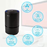 WSTA Desktop Air Purifier,Air Ionizer,Portable Air Purifier,True HEPA Air Cleaner Remove Cigarette Smoke,Dust,Pollen,Bad Odors with 5V USB Cable and 110V AC Adaptor (Black Wood Grain)