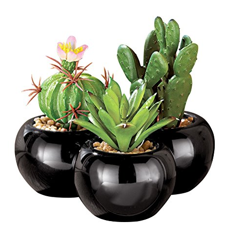 Artificial Mini Cactus - Set of 3