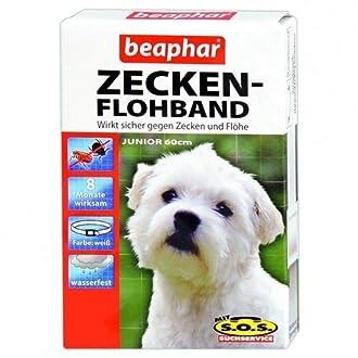 Hunde Flohhalsband Bild