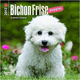 Buy Bichon Frise Puppies 2017 Calendar Book Online at Low