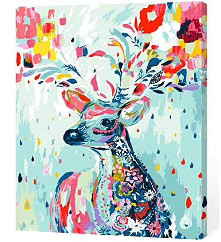 LOSTART [Framed] Diy Oil Painting,Paint by Numbers for Adult kit 16 by 20-Inch (Rainbow -
