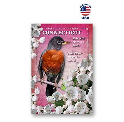 Connecticut Postcard - CONNECTICUT BIRD AND FLOWER postcard set of 20 identical postcards. CT state symbols post cards. Made in USA.