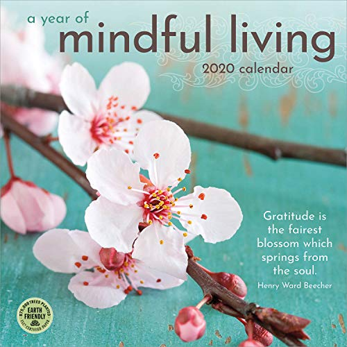 A Year of Mindful Living 2020 Wall Calendar