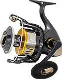 Shimano Twin Power SW B 10000 PG salwater spinning fishing reel, TP10000SWBPG