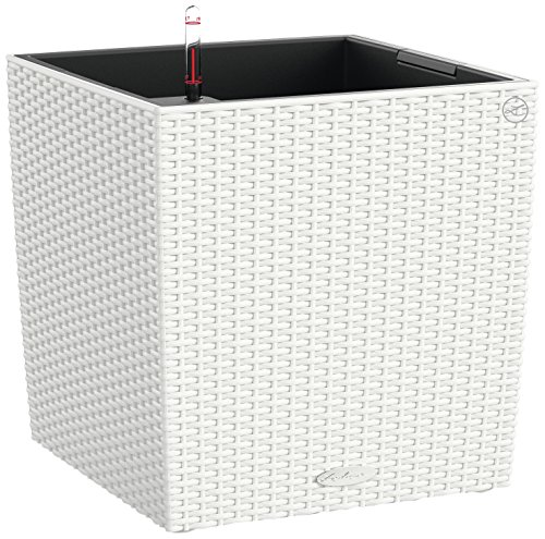 Lechuza Cube Cottage 50 Self-Watering Garden Planter for Indoor and Outdoor Use, White Wicker