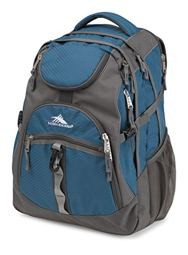 HIgh Sierra Acces Laptop Backpack