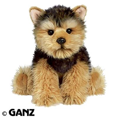 Webkinz Signature Short Haired Yorkie with Trading Cards: Toys & Games