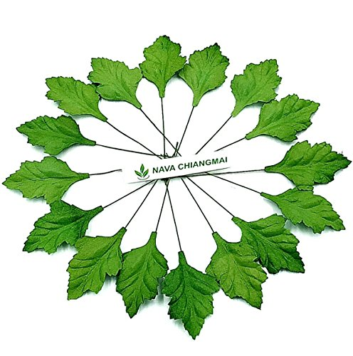 NAVA CHIANGMAI Mulberry Paper Leaves, Artificial Leaves,Decorative Paper,Scrapbook Craft Making Card DIY, Scrapbooking Wedding Doll House Supplies Card. (Leaves of Chrysanthemum)