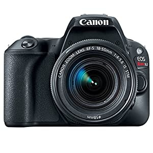 Canon EOS Rebel SL2 DSLR Camera + EF-S 18-55mm IS STM + EF 75-300mm III + 64GB Memory Card + Wide Angle & Telephoto + RS…