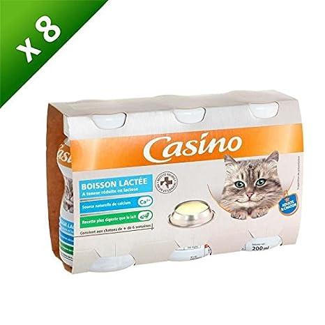 Casino leche – para gato ...
