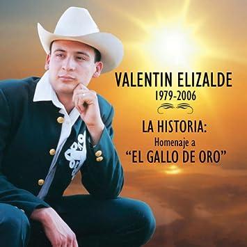 Historia: Homenaje A El Gallo De Oro