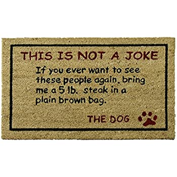 Dog Door Mat, 18