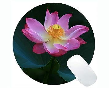 Yanteng India Flor de Loto Hojas Personalizadas Serie ...