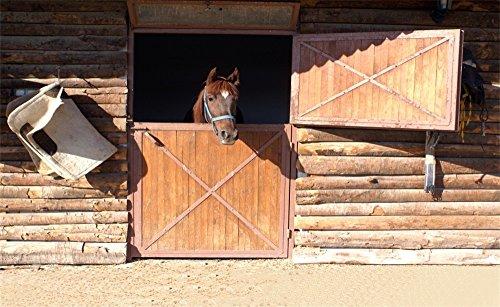 - Leowefowa 7X5FT Vinyl Old Barn Backdrop Ancient West Cowboy Horse Rustic Stripes Wood Plank Grunge Wallpaper Photography Background Kids Adults Photo Studio Props