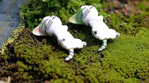 Amazon.com: Miraclekoo 6 piezas Jardín de hadas en miniatura ...