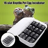 ZeHui Reptile Egg Incubator Tray Lizard Gecko Snake Bird Egg Hatcher Box Case 16 Slot