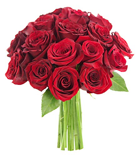 (KaBloom The Romantic Classic Bouquet of 18 Fresh Red Roses (Farm-Fresh, Long-Stem))
