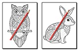 100 Animals: An Adult Coloring Book with