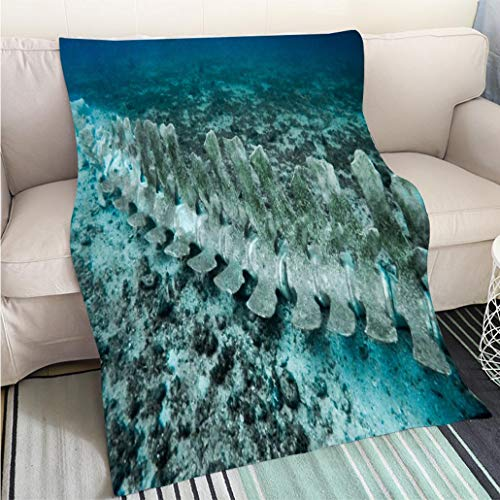 (Super Soft Flannel Thicken Blanket Rare Whale Skeleton Underwater Perfect for Couch Sofa or Bed Cool Quilt)